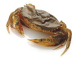 【殻ごと食べられる渡り蟹】ソフトシェルクラブ ホテルサイズ(50g/匹 18匹/1パック)