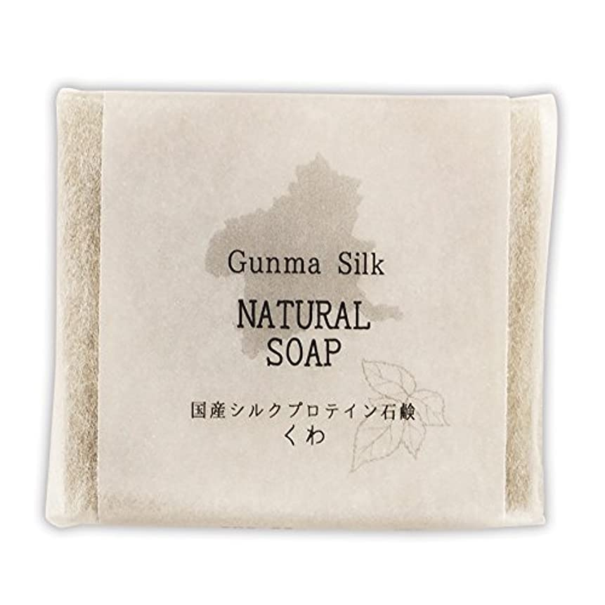 蒸気ねばねば検査BN 国産シルクプロテイン石鹸 くわ SKS-03 (1個)