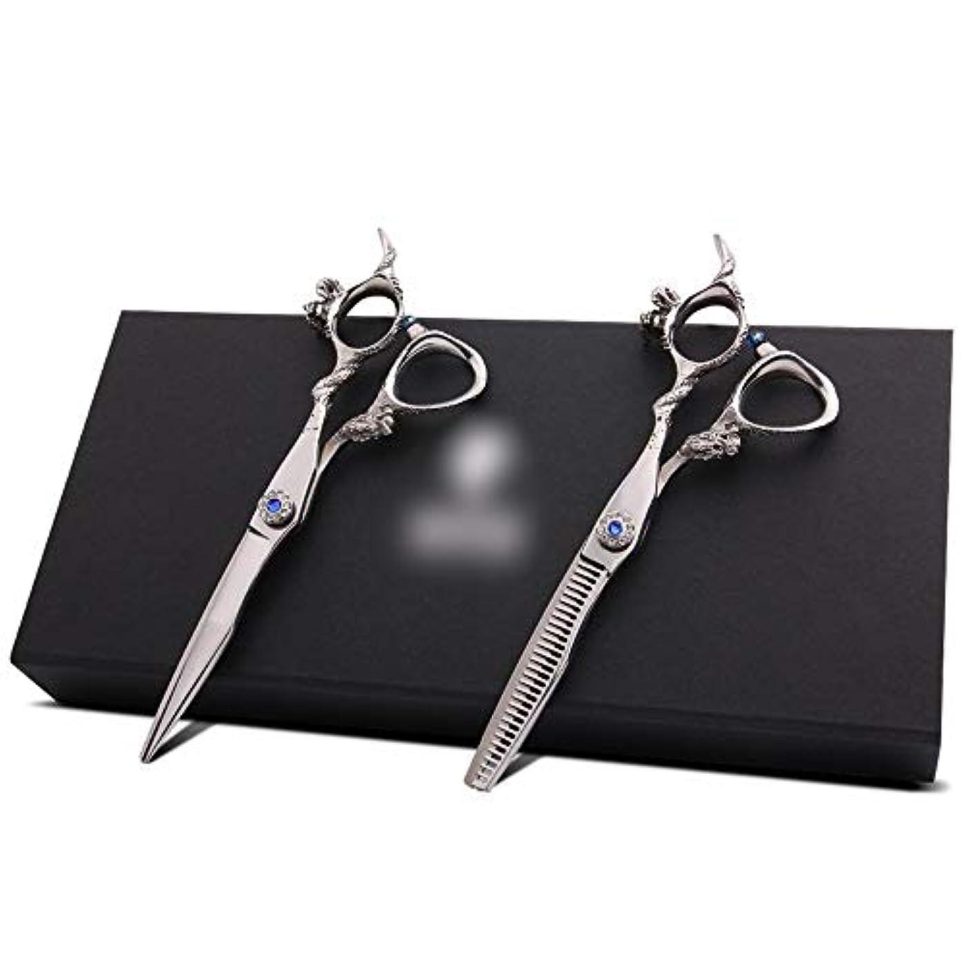 給料急勾配のアジテーションGoodsok-jp ブルーダイヤモンド6インチ理髪はさみセット、前髪カットフラット歯はさみ散髪セット (色 : Silver)