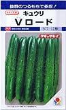 【種子】きゅうり Vロード 約12粒