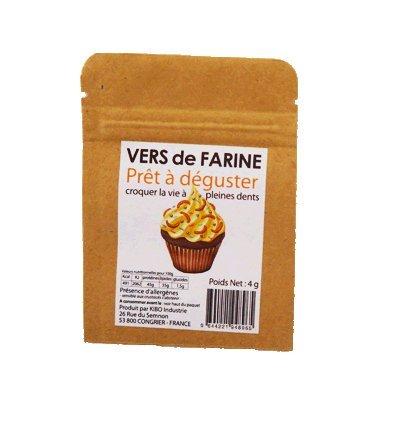 KIBO 食べるミルワーム(食用昆虫) フランス産 プレーン味 4g 3個パック [並行輸入品]