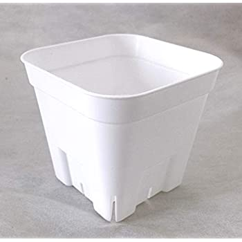 プレステラ 鉢 90型 ホワイト 白 10個セット