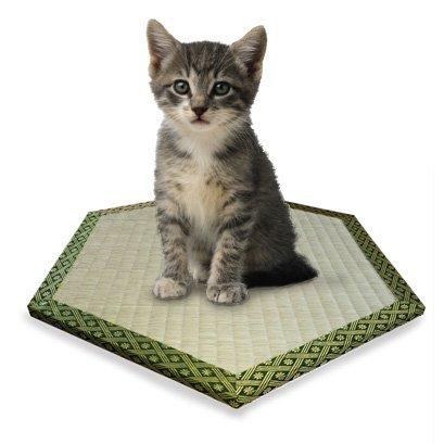 (猫転送装置)猫ワープ・猫ちゃん用六角形畳
