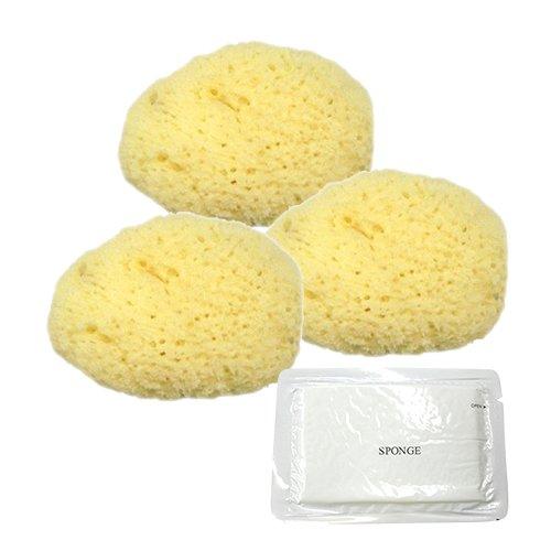ユタカ 天然海綿スポンジ(フェイススポンジ) 大 × 3個 + 圧縮スポンジセット