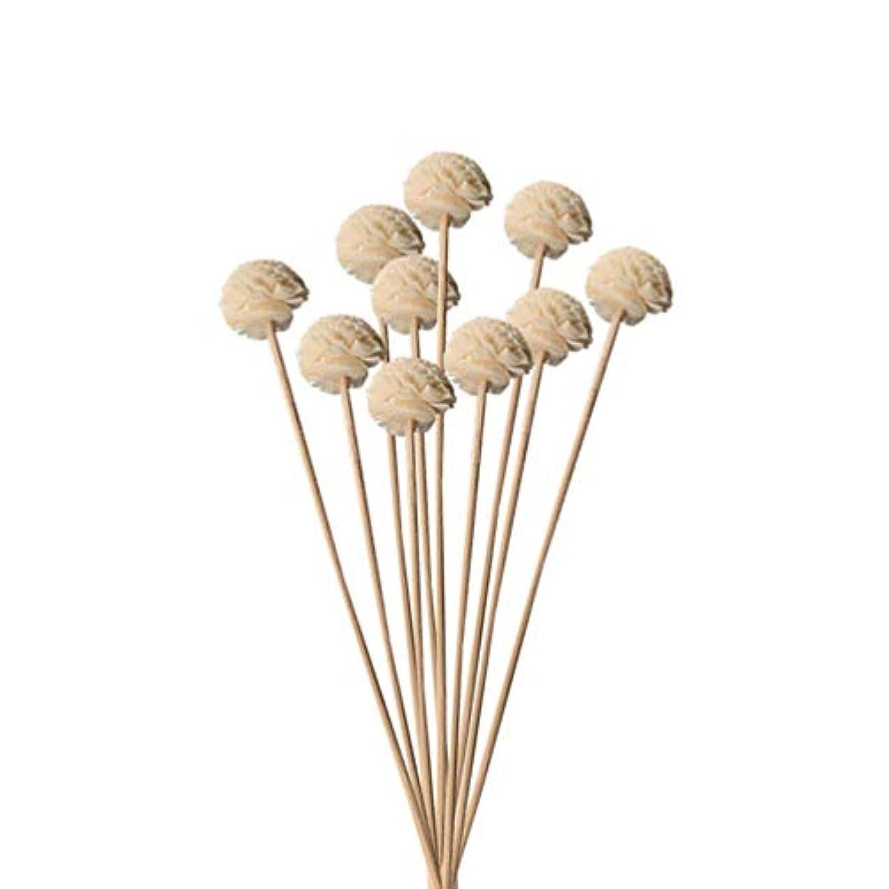 装備する役割湿原Hongma 10本入り 造花 ラタンスティック リードディフューザー用 リフィル 高品質 かわいい クラフト 本色