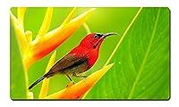 赤い鳥 大型マウスパッド テーブルマット(350x600x3mm)