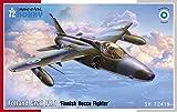 スペシャルホビー 1/72 フィンランド空軍 フォーランド・ナットFR.1戦闘偵察機 プラモデル SH72419