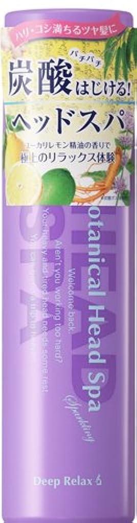 ステレオタイプ力学カートン髪質改善研究所 炭酸ヘッドスパ 120g 【HTRC2.1】