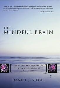 Norton Series on Interpersonal Neurobiology 7巻 表紙画像