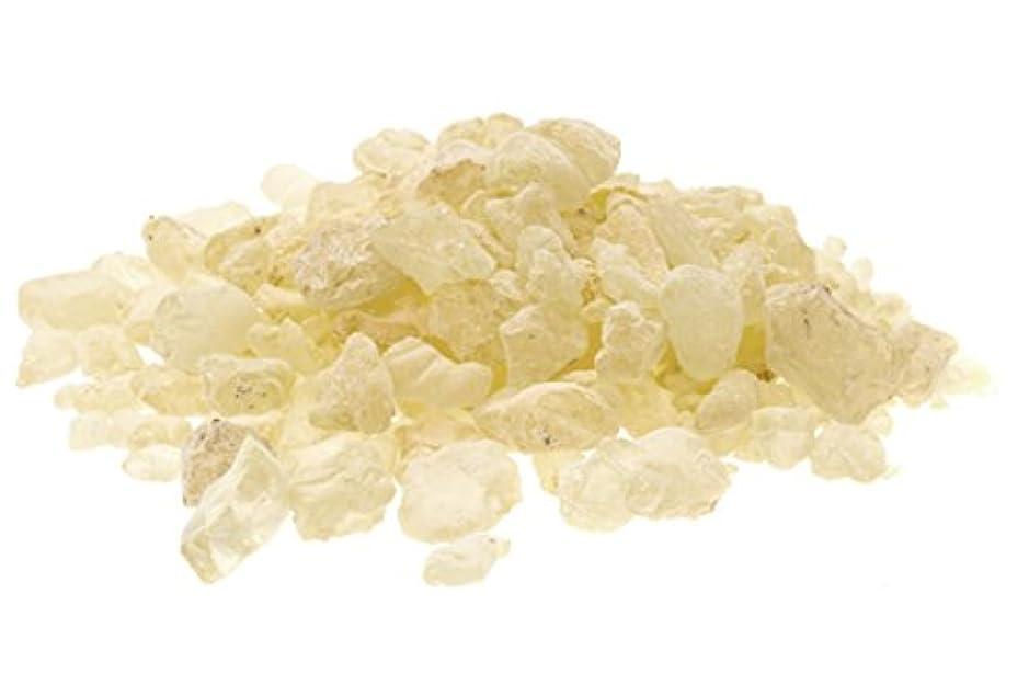 アイスクリームカートンスチュワードAlternative想像力Copal樹脂Incenseブランド。 1 Pound (Grade B)