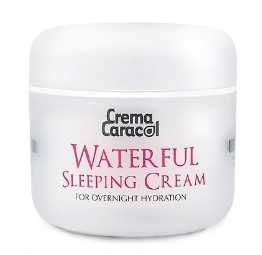 役員エスカレート勇敢な[JAMINKYUNG] Waterful Sleeping Cream/孜民耕 [ジャミンギョン] ウォーターフルスリーピングクリーム [並行輸入品]