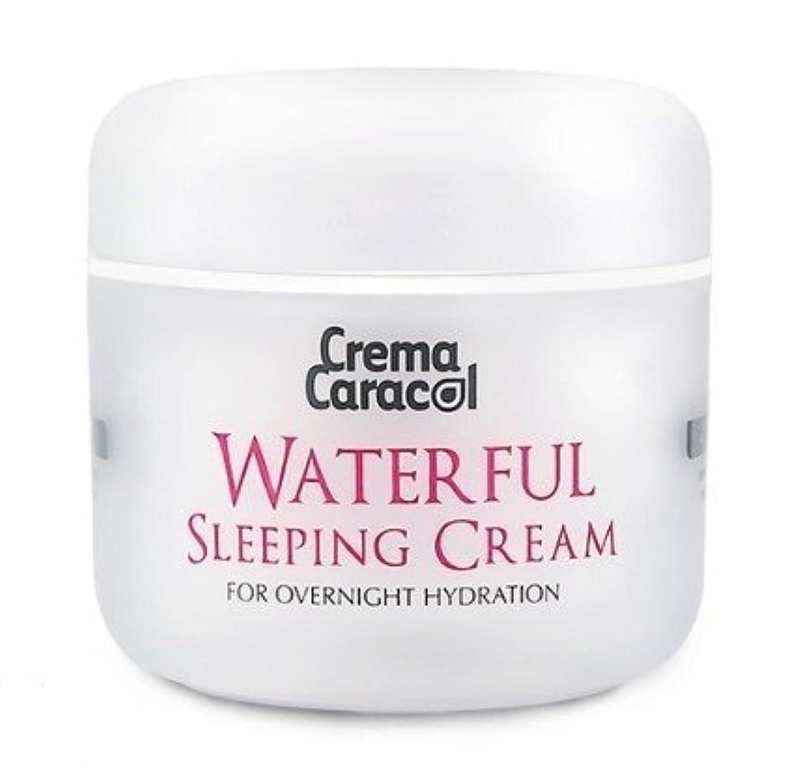 マディソン岩浴室[JAMINKYUNG] Waterful Sleeping Cream/孜民耕 [ジャミンギョン] ウォーターフルスリーピングクリーム [並行輸入品]