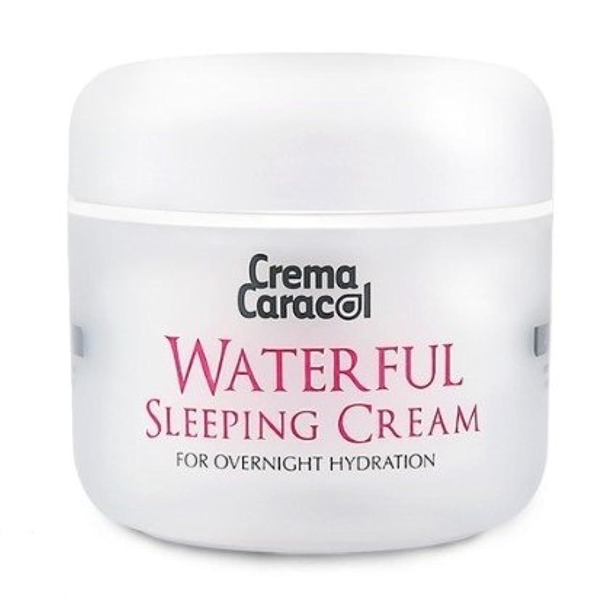 にもかかわらず心配スムーズに[JAMINKYUNG] Waterful Sleeping Cream/孜民耕 [ジャミンギョン] ウォーターフルスリーピングクリーム [並行輸入品]