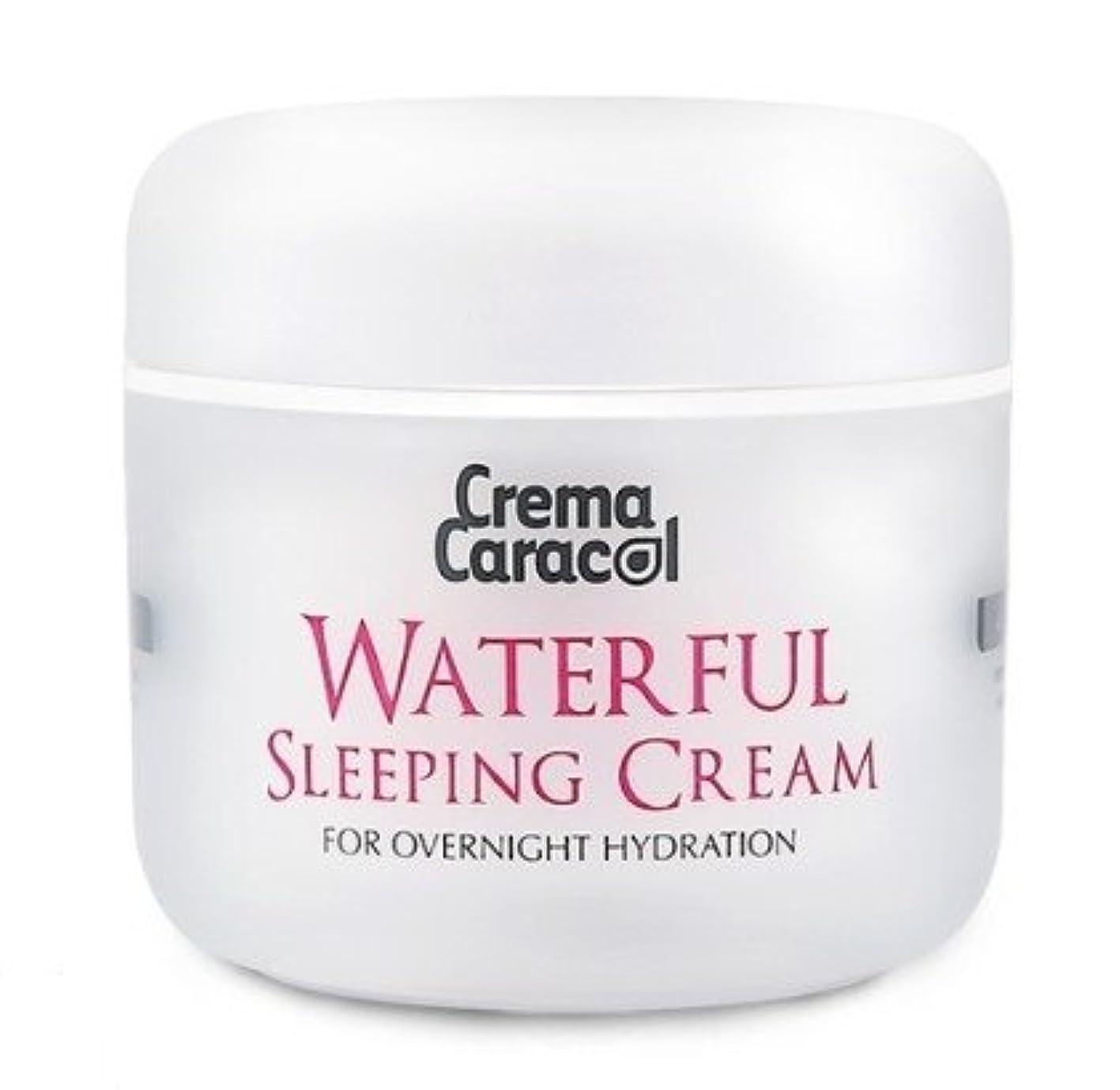 同級生温室転用[JAMINKYUNG] Waterful Sleeping Cream/孜民耕 [ジャミンギョン] ウォーターフルスリーピングクリーム [並行輸入品]