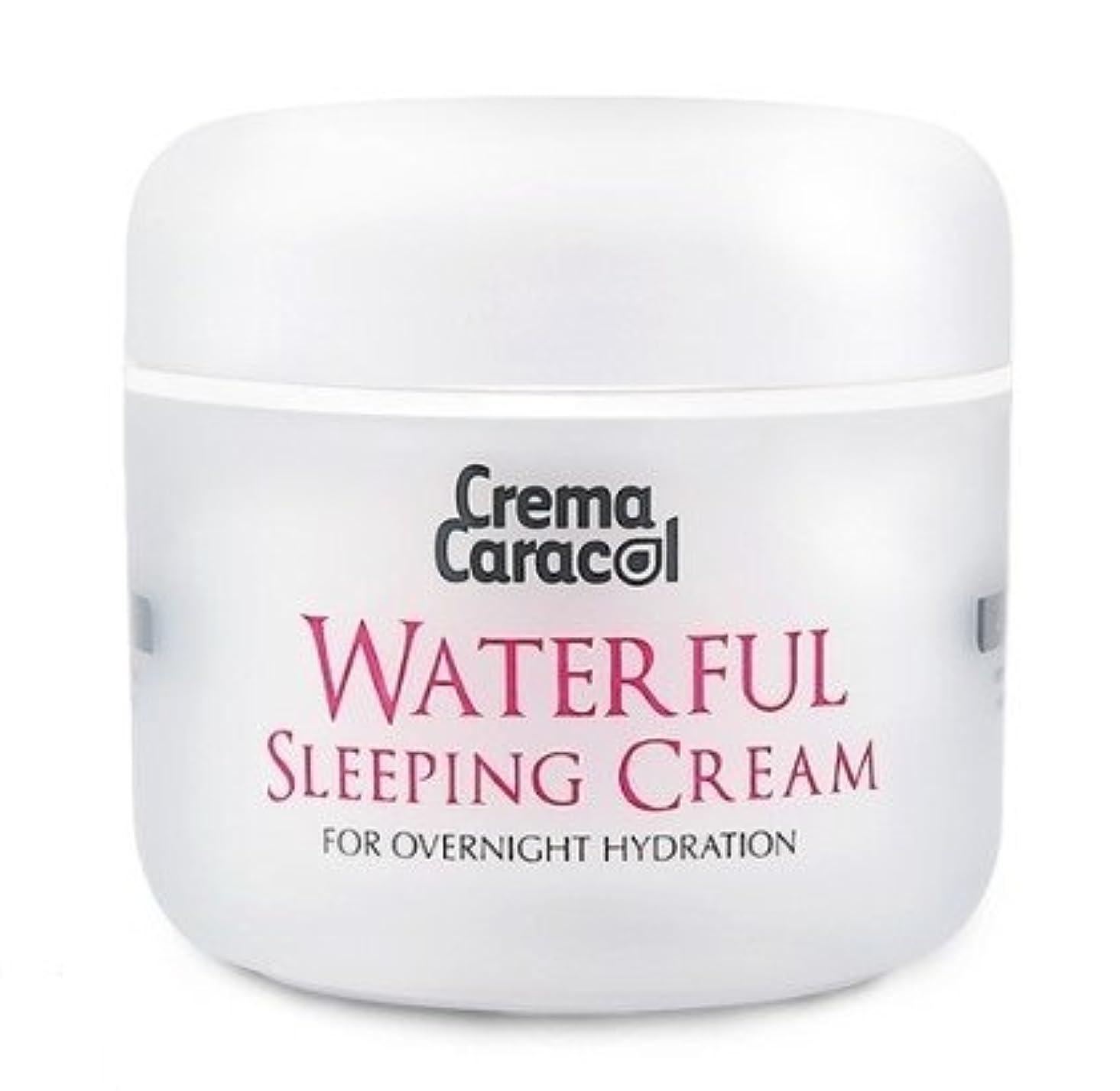 ミストイレ心臓[JAMINKYUNG] Waterful Sleeping Cream/孜民耕 [ジャミンギョン] ウォーターフルスリーピングクリーム [並行輸入品]