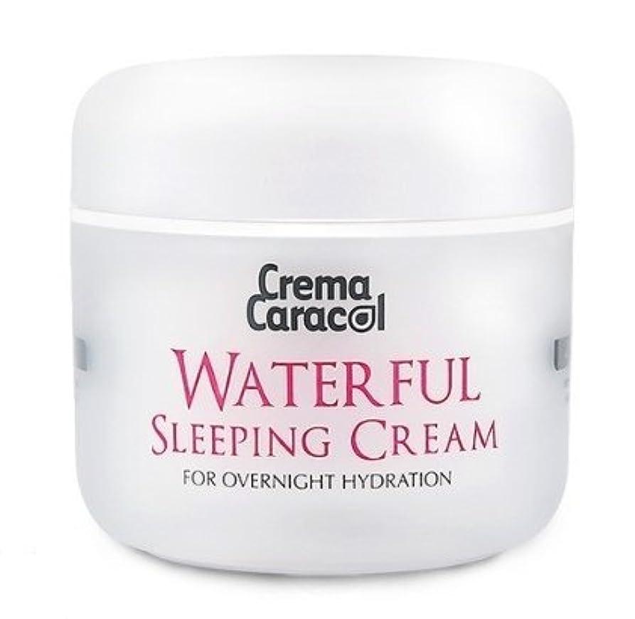 未接続法律単調な[JAMINKYUNG] Waterful Sleeping Cream/孜民耕 [ジャミンギョン] ウォーターフルスリーピングクリーム [並行輸入品]