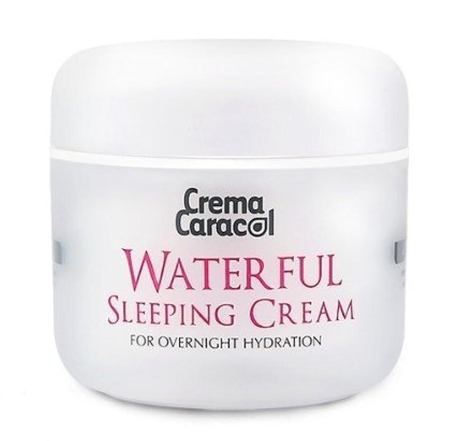 ばかげているアンソロジーなぞらえる[JAMINKYUNG] Waterful Sleeping Cream/孜民耕 [ジャミンギョン] ウォーターフルスリーピングクリーム [並行輸入品]