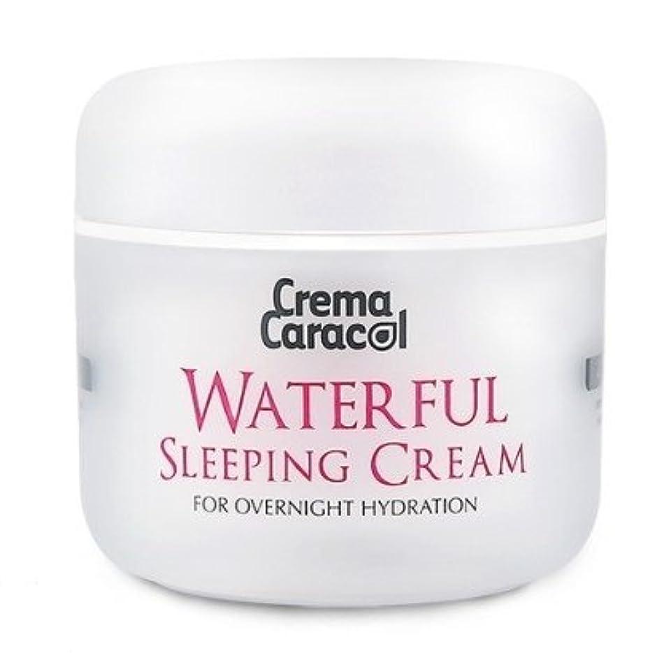 囲い液体表面[JAMINKYUNG] Waterful Sleeping Cream/孜民耕 [ジャミンギョン] ウォーターフルスリーピングクリーム [並行輸入品]