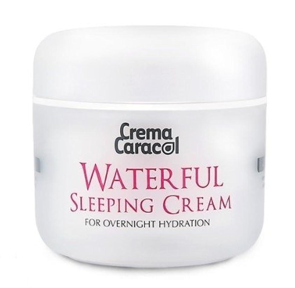 失望許される和らげる[JAMINKYUNG] Waterful Sleeping Cream/孜民耕 [ジャミンギョン] ウォーターフルスリーピングクリーム [並行輸入品]