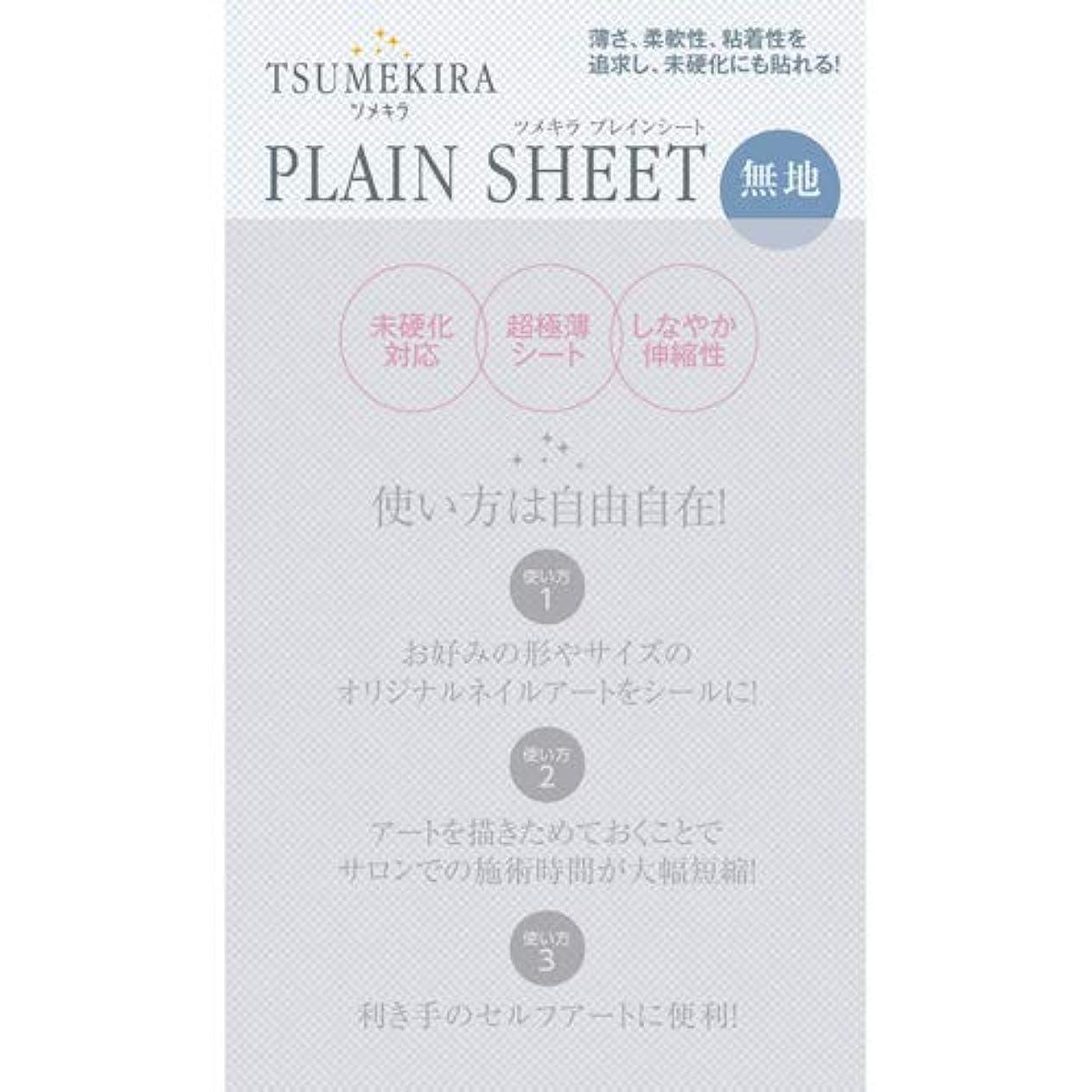 スケッチスリッパフローティングTSUMEKIRA プレインシート 【アート?ネイル用品】