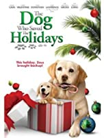 Dog Who Saved the Holidays [DVD] [Import]