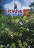 かながわの蝶 バタフライ・ウォッチング 画像