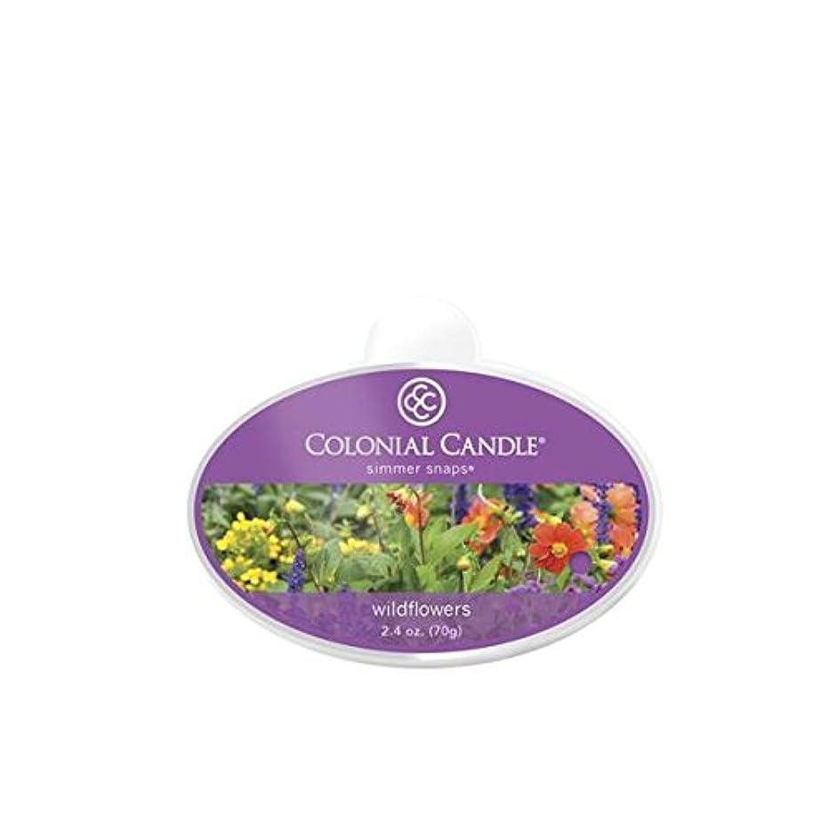 空の明るい正しくColonial Candle CCSNAPS。5065 SimmerスナップWildflowers Scented Candle