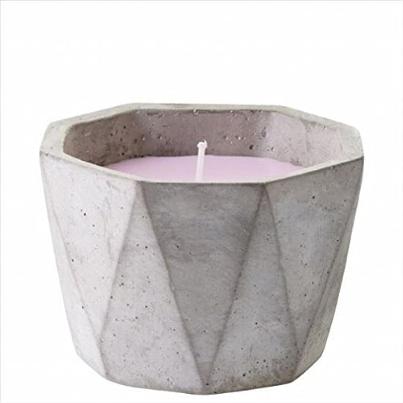 植物学者不安レクリエーションカメヤマキャンドル(kameyama candle) POiNT A LA LiGNE セメントポットセンティッドキャンドル 「 マグノリアセージ 」