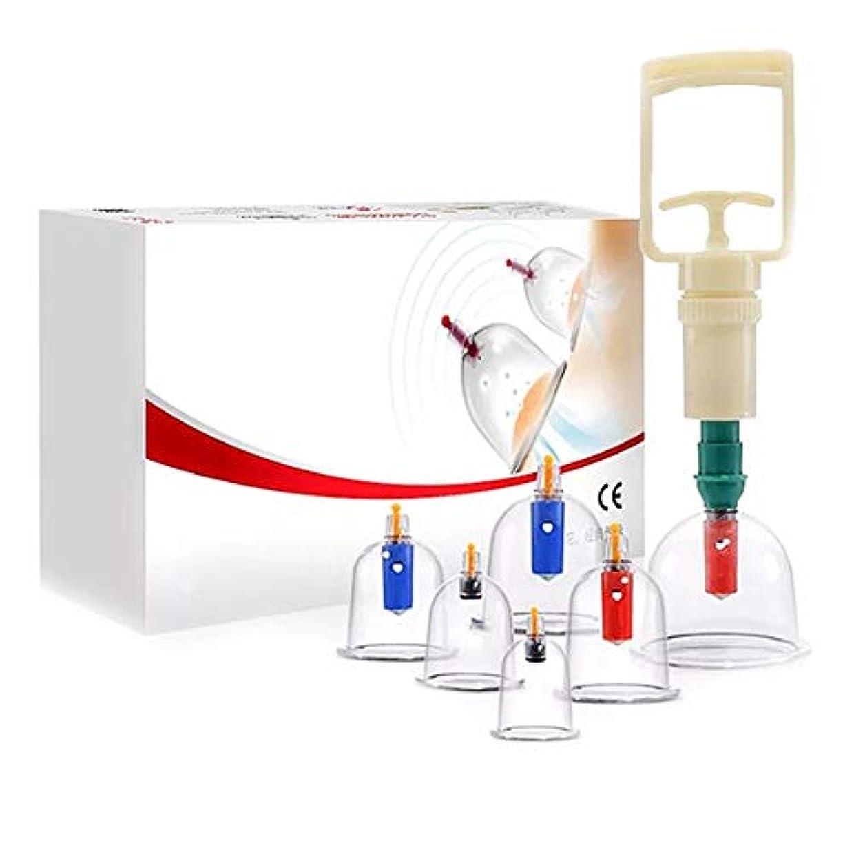 適性恐怖廃棄6カップカッピングセットプラスチック、真空吸引生体磁気中国ツボ療法、ポンプ付き医療、ボディマッサージ痛み緩和理学療法排泄毒素