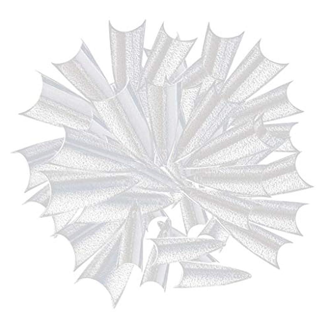 乱気流再生可能バスルームDYNWAVE ネイルの練習、ネイルサロン、ネイルポリッシュディスプレイのための500個の長い鋭いネイルのヒント - クリア