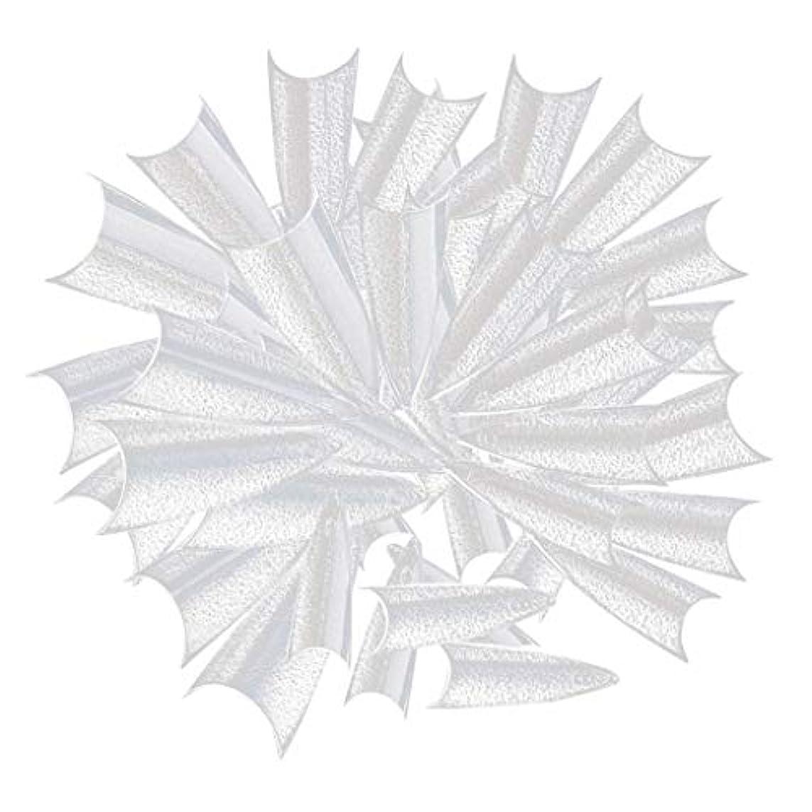 記念日描く対人ネイルの練習、ネイルサロン、ネイルポリッシュディスプレイのための500個の長い鋭いネイルのヒント - クリア