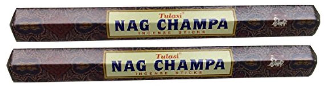 概念色合い夜の動物園TULASI サラチ STICKS お香 40本入り NAG CHAMPA ナグチャンパ 025001-2