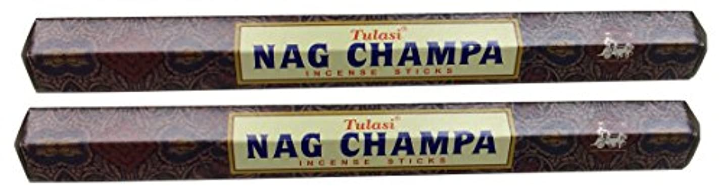 相対サイズプラスチックキャンペーンTULASI サラチ STICKS お香 40本入り NAG CHAMPA ナグチャンパ 025001-2