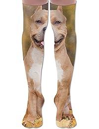 ソフト 65CM 靴下 オーバーニー ハイソックス ロングニーハイ 口ゴムゆったり ビジネスソックス ピット ブル テリア 3Dプリント 防寒 フットサポート付き 出先 美脚 脚長効果抜群 大人気