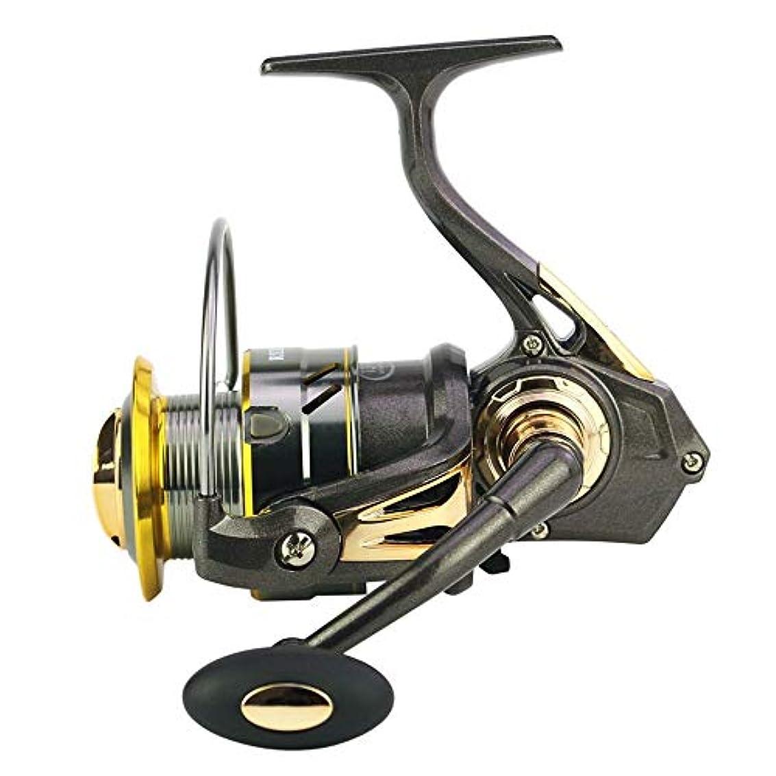 変色する処方する突き刺すSikurery 釣りリール釣りギアリール釣り糸紡績機金属ロッカーアーム (Size : KY3000)