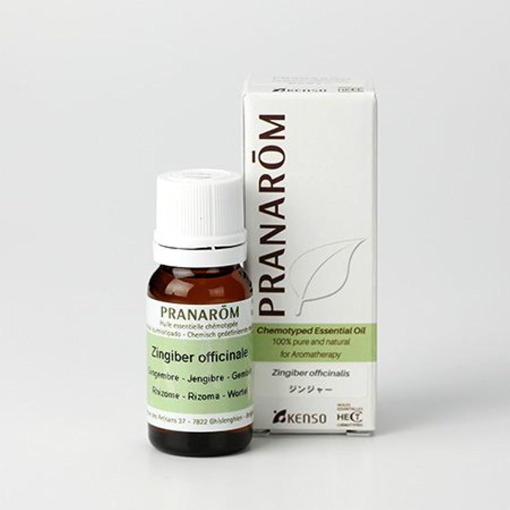 アウター指標従順プラナロム ジンジャー 10ml (PRANAROM ケモタイプ精油)