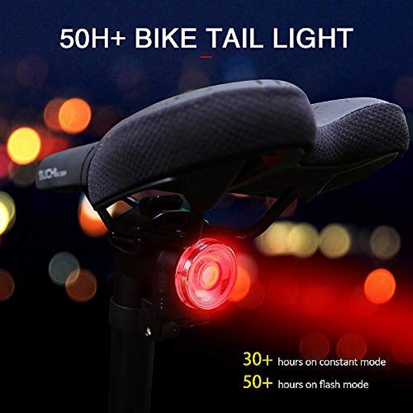 行列現代望むIrfora 充電式自転車テールライト自転車リアライト撥水性安全警告テールライトロード懐中電灯超長寿命