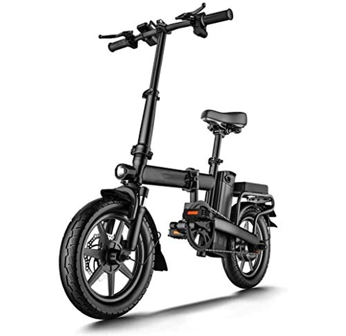 天井バング命題LCDバックライト付きインストゥルメントパネルの前面と背面ディスクブレーキ二重管衝撃吸収電動バイクと折りたたみ電動自転車、