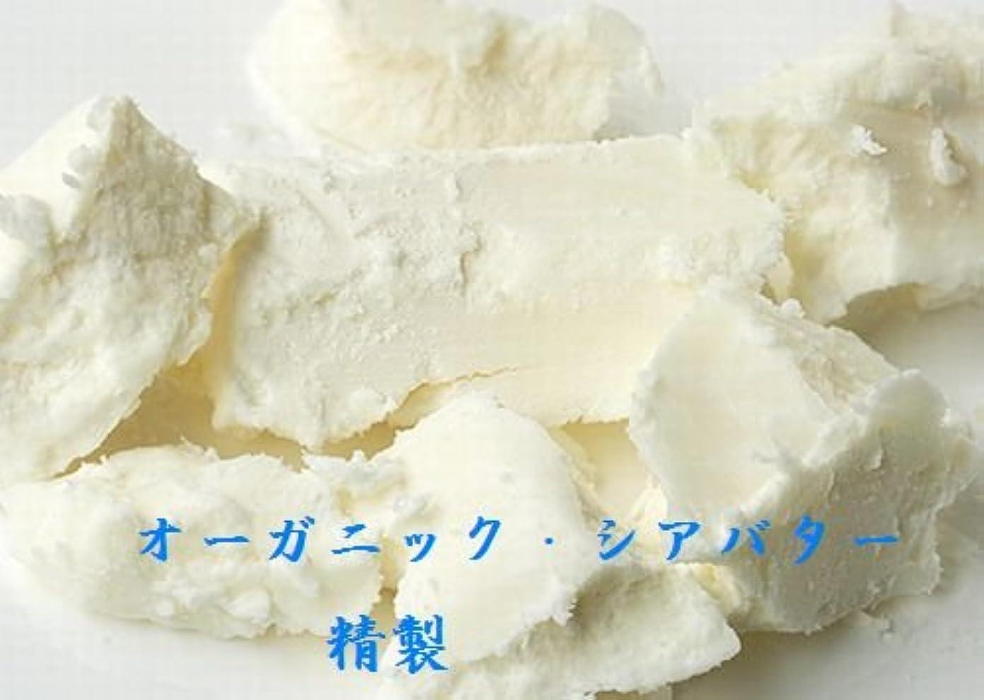 半島項目貧しいシア バター 精製 オーガニック 100g 送料込み