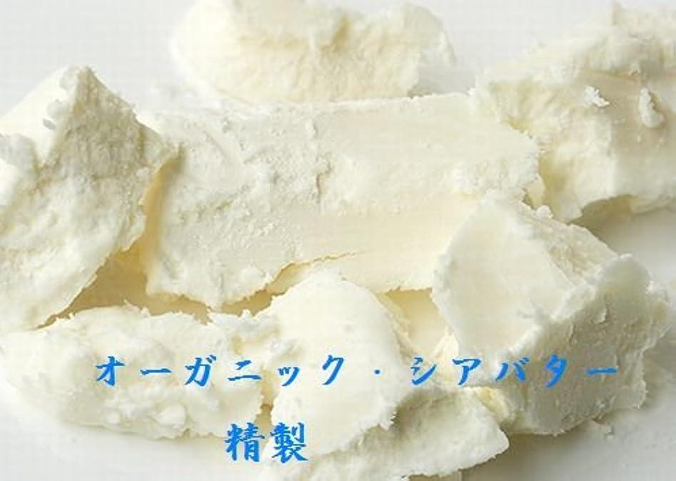 期間奪う加速度シア バター 精製 オーガニック 100g 送料込み