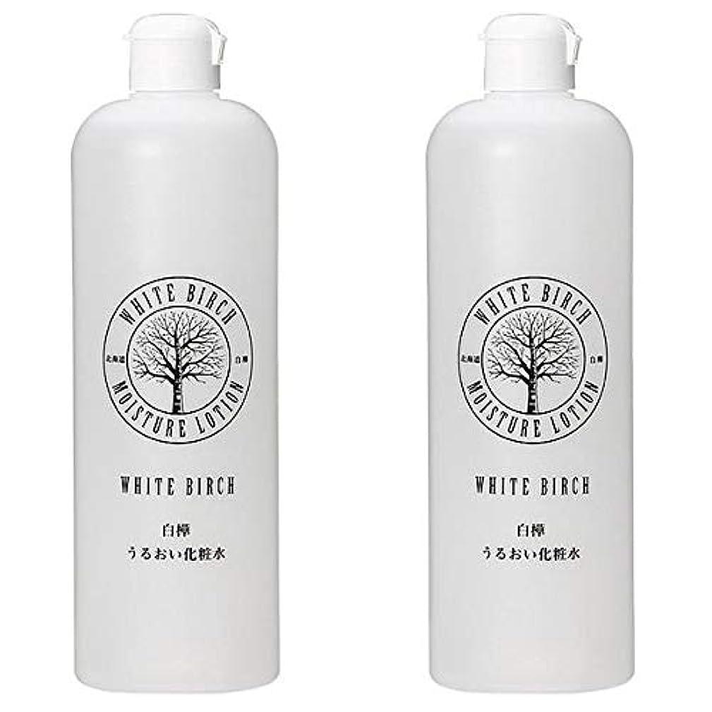 一ユニークな速報北海道アンソロポロジー 白樺うるおい化粧水 500mL 【2個セット】