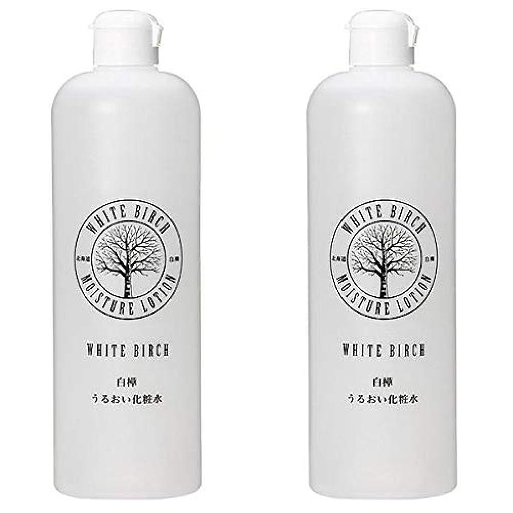 ハング他に惨めな北海道アンソロポロジー 白樺うるおい化粧水 500mL 【2個セット】
