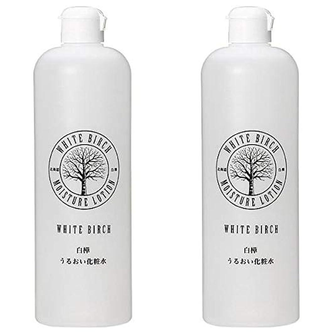 先史時代のホイール修復北海道アンソロポロジー 白樺うるおい化粧水 500mL 【2個セット】