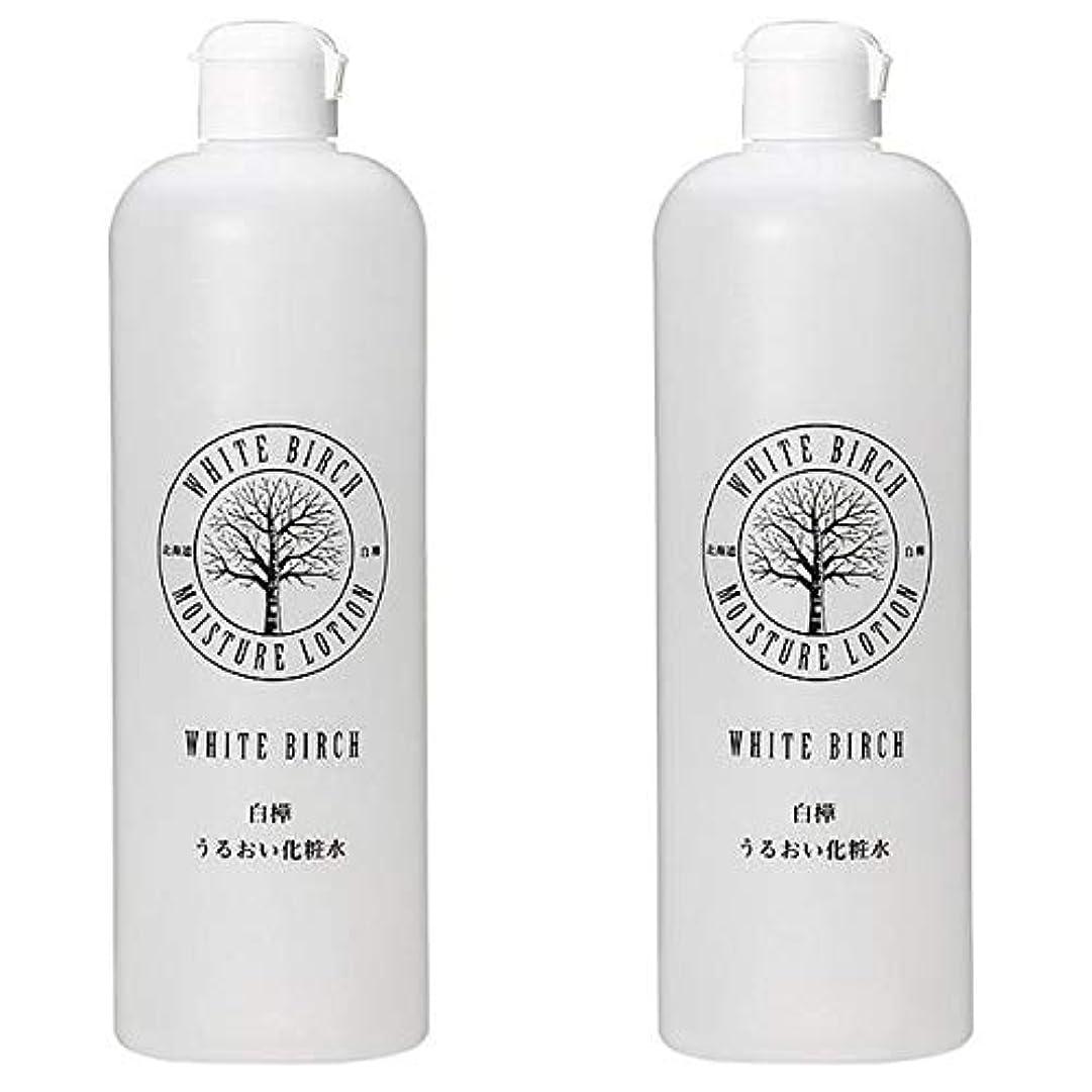 描く時期尚早秀でる北海道アンソロポロジー 白樺うるおい化粧水 500mL 【2個セット】