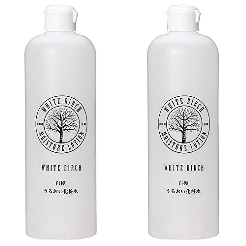複数頬うなずく北海道アンソロポロジー 白樺うるおい化粧水 500mL 【2個セット】