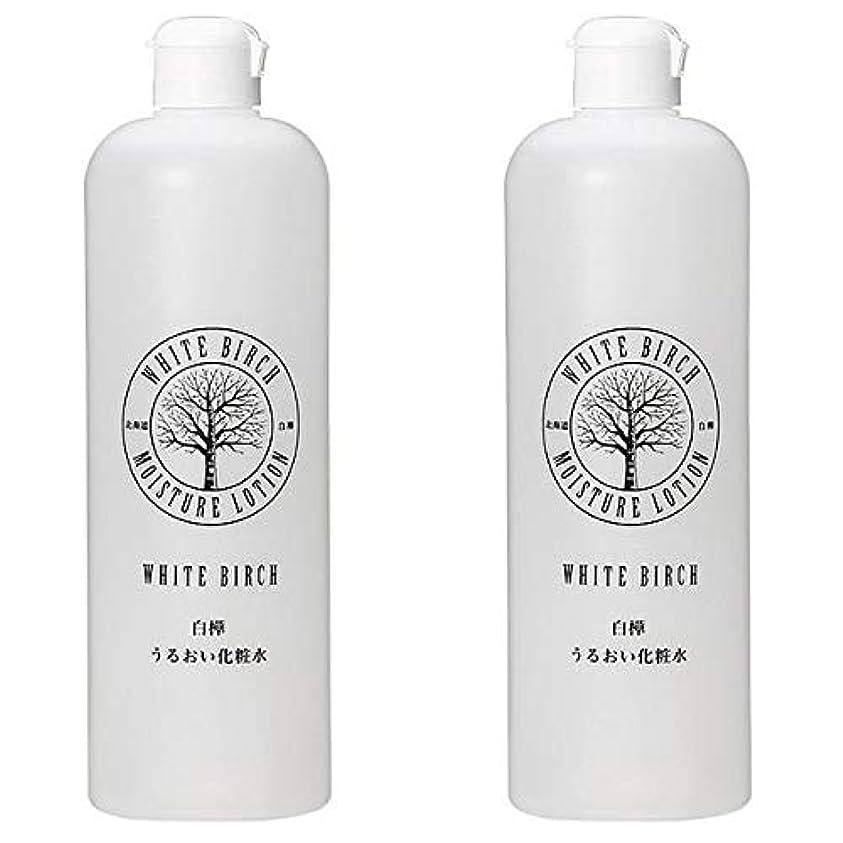 好奇心リテラシー捨てる北海道アンソロポロジー 白樺うるおい化粧水 500mL 【2個セット】