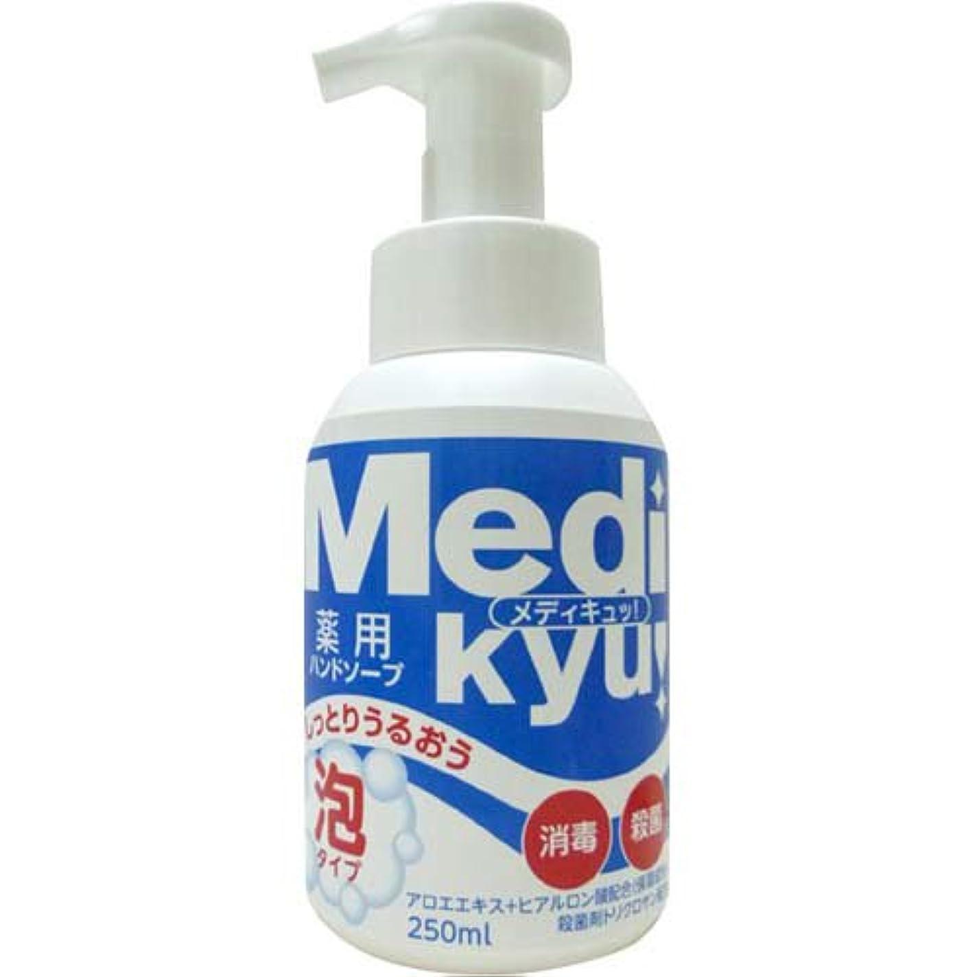 悩み賞賛する経験者メディキュッ 泡ハンドソープ 250ML [医薬部外品]