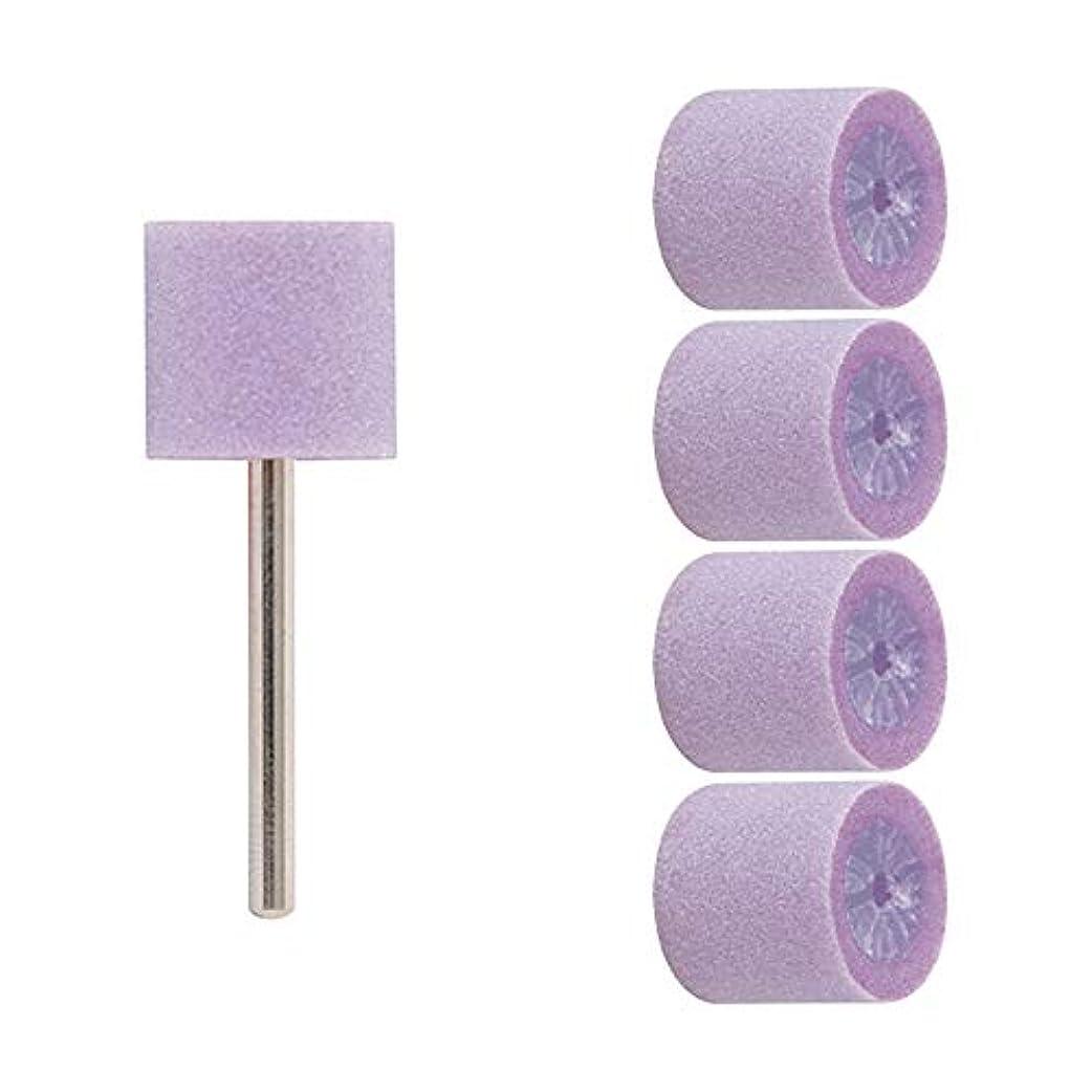 寝室を掃除する釈義悪性腫瘍Nail Labo スポンジバッファー ビットセット ミディアム