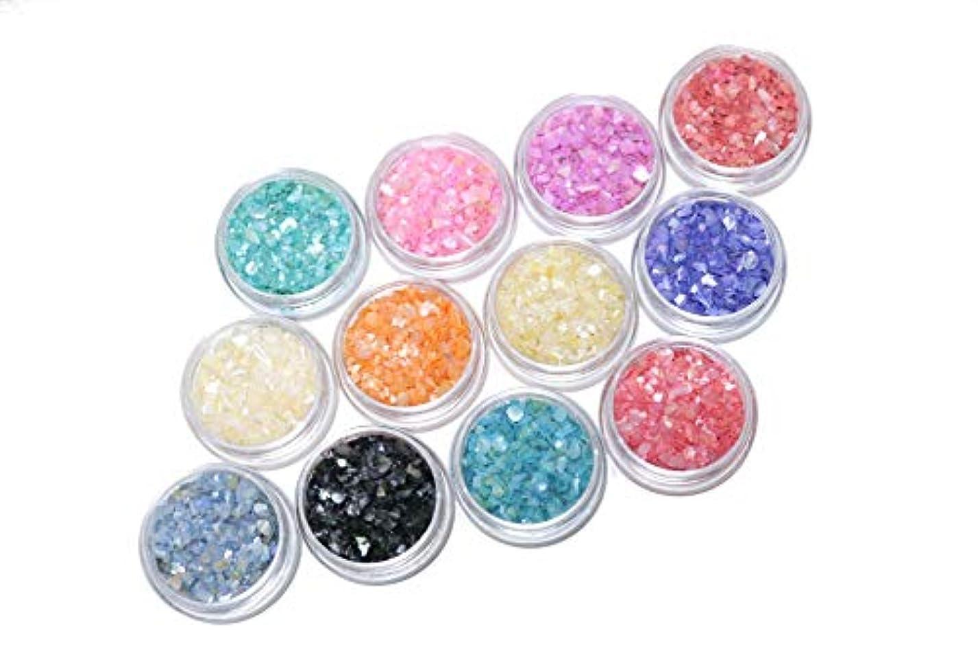蓮科学的繁雑【jewel】シェルパウダー クラッシュホログラム たっぷり3g入り 12色セット ネイル