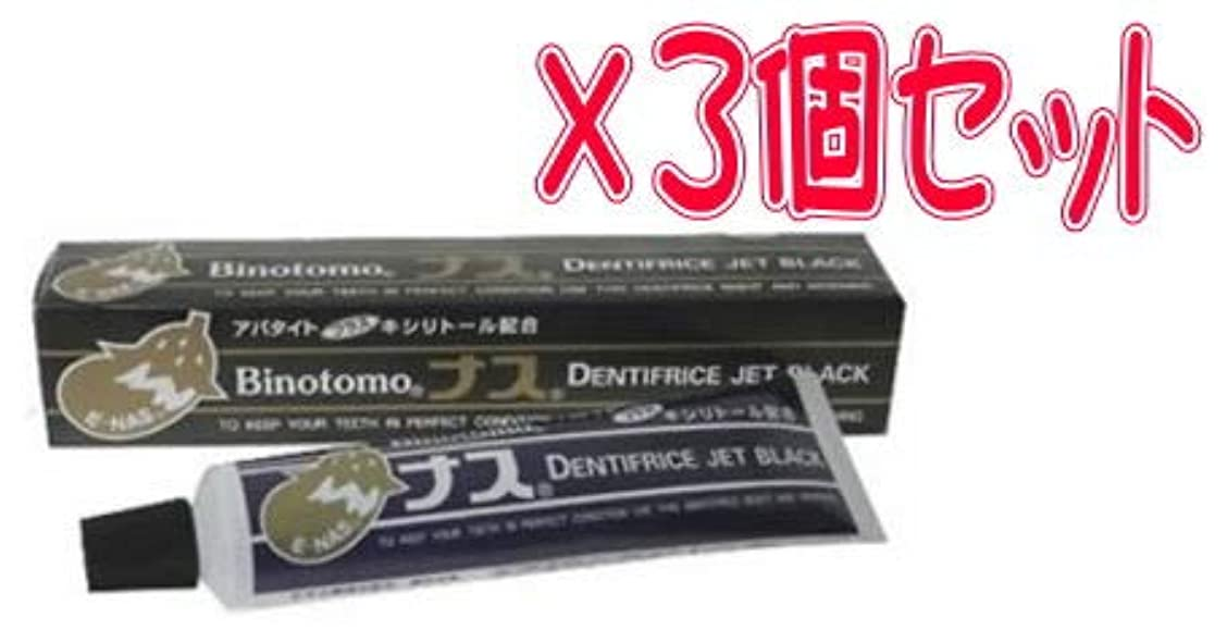 【まとめて3個セット】ナスハミガキ ブラック 130g×3